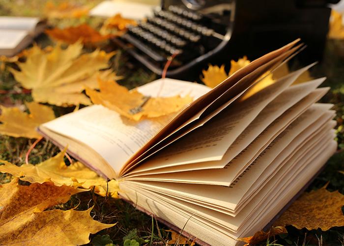 <br> 心と体を暖かくしてくれる<br> 魅力的なソウルのユニークな書店を紹介します。